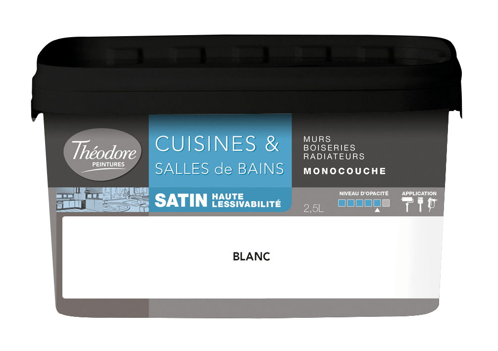 CUISINES & SALLES DE BAINS SATIN LESSIVABLE MONOCOUCHE